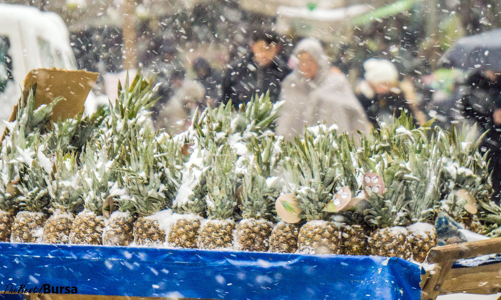 Pineapples in a Snowstorm