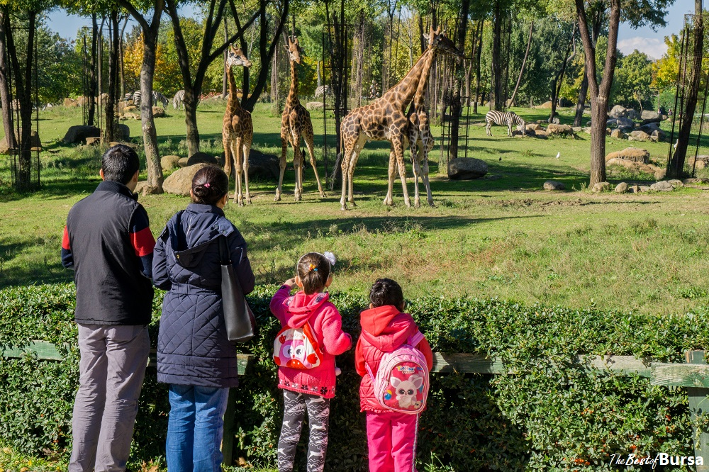 Bursa Attractions for Families with Children
